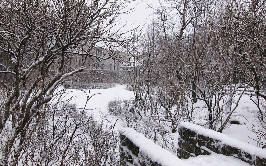 Snowypark_BLOG